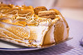 Norwegian omelette (or Baked Alaska) cake macro Royalty Free Stock Photography