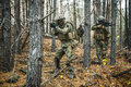 Norwegian soldiers in the forest Royalty Free Stock Photo