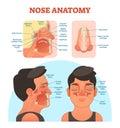 Nose anatomy medical vector illustration diagram.