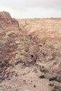 Not Quite Barren Landscape | Badlands National Park, South Dakota, USA Royalty Free Stock Photo