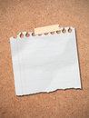 Note paper post on wooden board. Stock Image