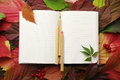 Notebook with blank pages and a wooden color pencils on autumn leaves Royalty Free Stock Photo