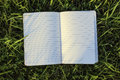 Notepad on the green grass Royalty Free Stock Photo