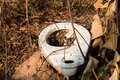 Nothing outdoor latrine in the forest cover,toilet Royalty Free Stock Photo
