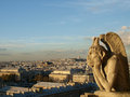 Notre dame cathedral gargoyle overlooking paris skyline at sunset Stock Image
