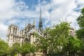 Notre Dame cathedral in springtime, Paris France Royalty Free Stock Photo