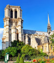 Notre dame de paris cathedral garden with flowers france Stock Photography