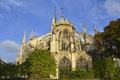 Notre dame de paris exterior church surrounded by trees and blue sunny sky Royalty Free Stock Image