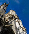 Notre dame de paris fragment of facade gothic catholic cathedral in france Stock Images