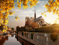 Notre Dame and park in autumn Royalty Free Stock Photo