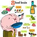 Nourish the brain vector illustration Royalty Free Stock Image
