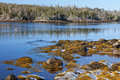Nova scotia shoreline along rocky coast of Stock Photos