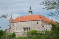 Nove mesto nad metuji czech republic castle in eastern bohemia Royalty Free Stock Photography