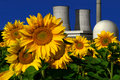 Nuclear power plant behind a sunflower field Royalty Free Stock Photo