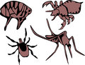 Nuisance flea louse tick and mosquito two colors illustrations Royalty Free Stock Image