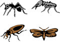 Nuisance stylized pests in the home two colors illustrations Royalty Free Stock Images