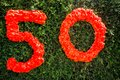 Number fifty written on a bush Stock Photos