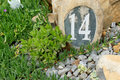Number fourteen in a garden the engraved into rock dessert Stock Photography