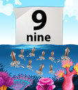 Number nine and nine squids underwater Royalty Free Stock Photo