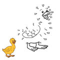 Numbers game (goose, chick) Royalty Free Stock Photo
