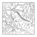 Numbers game (iguana)