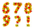 Numbers and punctuation marks made from autumn leaves isolated on white Stock Photos