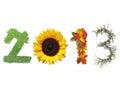 Nuovo 2013 anni Fotografia Stock Libera da Diritti