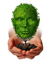 Nurture growth life development concept with a hand holding a green tree shaped as a front view human head as a caring metaphor Royalty Free Stock Image