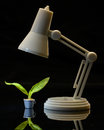Nurture littlelamp nurtures a plant by providing light for it to grow Royalty Free Stock Images