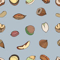 Nut seamless on white background. Hand drawn colorful pattern with different kind: pecan, almond, macadamia, pistachio