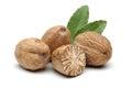Nutmeg on white background macro shot Royalty Free Stock Image