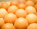 The Nutritional Value of  Egg whites are a low-calorie, fat-free Royalty Free Stock Photo