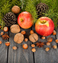 Nuts apples and green twigs on a gray background Royalty Free Stock Photo