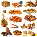 Nuts collection on white Royalty Free Stock Images