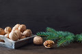 Nuts and fir Royalty Free Stock Photos