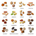 Nuts Flat Icons Set