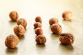 Nuts and hazelnuts walnuts in rows autumn fruits Stock Image