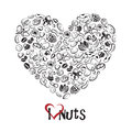 Nuts icon as heart