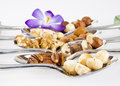 Nuts make good snack Royalty Free Stock Photo