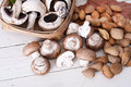 Nuts and mushrooms still life with almonds fall season Stock Photography