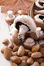 Nuts and mushrooms still life with almonds fall season Royalty Free Stock Photo