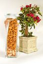 Nuts and Roses Royalty Free Stock Photo