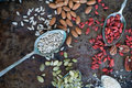 Nuts and seeds Royalty Free Stock Photo