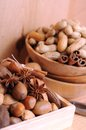 Nuts in shells Royalty Free Stock Images