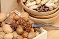 Nuts in shells hazelnut almond brazil nut walnut and pecan Royalty Free Stock Photography