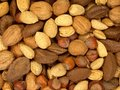 Nuts About You 1 Royalty Free Stock Photo