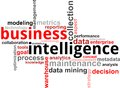 Nuvola di parola - business intelligence Fotografia Stock Libera da Diritti