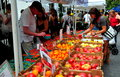 Nyc farmer s market at lincoln square people shopping for delicious farm grown regular and heirloom tomatoes the stokes farms Royalty Free Stock Photography