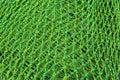 Nylon fishnet Royalty Free Stock Photo