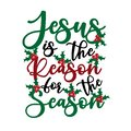 Jesus is the reason for the season - Calligraphy text, with mistletoe. Royalty Free Stock Photo